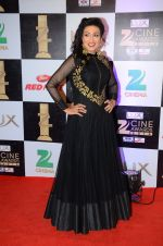 Rituparna Sengupta at zee cine awards 2016 on 20th Feb 2016 (47)_56c99c6928f39.JPG