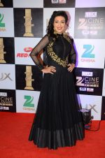 Rituparna Sengupta at zee cine awards 2016 on 20th Feb 2016 (48)_56c99c6a3d281.JPG
