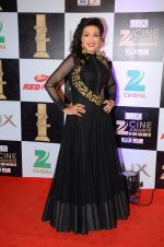 Rituparna Sengupta at zee cine awards 2016 on 20th Feb 2016 (49)_56c99c6b8dfa6.JPG