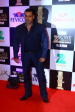 Salman Khan at zee cine awards 2016 on 20th Feb 2016