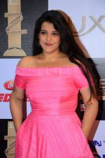 Sanah Kapoor at zee cine awards 2016 on 20th Feb 2016 (417)_56c99e72a58f7.JPG