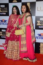 Sasha Agha at zee cine awards 2016 on 20th Feb 2016 (724)_56c99e8601183.JPG