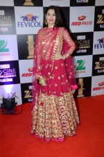 Sasha Agha at zee cine awards 2016 on 20th Feb 2016 (725)_56c99e8bd952f.JPG