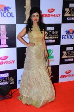 Shibani Kashyap at zee cine awards 2016 on 20th Feb 2016