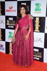 Shreya Ghoshal at zee cine awards 2016 on 20th Feb 2016