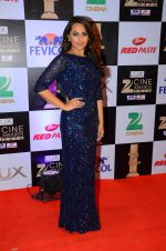 Sonakshi Sinha at zee cine awards 2016 on 20th Feb 2016