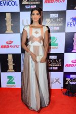 Sonam Kapoor at zee cine awards 2016 on 20th Feb 2016 (567)_56c99f3e5edcf.JPG