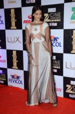 Sonam Kapoor at zee cine awards 2016 on 20th Feb 2016