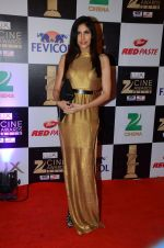 Sonnalli Seygall at zee cine awards 2016 on 20th Feb 2016