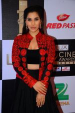 Sophie Chaudhary at zee cine awards 2016 on 20th Feb 2016