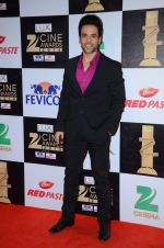 Tusshar Kapoor at zee cine awards 2016 on 20th Feb 2016