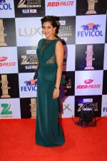 at zee cine awards 2016 on 20th Feb 2016 (490)_56c998d028c4c.JPG