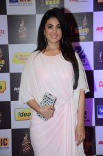 Aarti Chhabria at radio mirchi awards red carpet in Mumbai on 29th Feb 2016 (77)_56d59d1f80b89.JPG