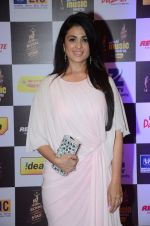 Aarti Chhabria at radio mirchi awards red carpet in Mumbai on 29th Feb 2016 (76)_56d59d1e7b2b4.JPG