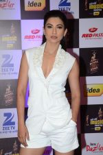 Gauhar Khan at radio mirchi awards red carpet in Mumbai on 29th Feb 2016