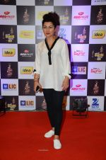 Hard Kaur at radio mirchi awards red carpet in Mumbai on 29th Feb 2016