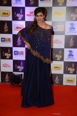 Hrishita Bhatt at radio mirchi awards red carpet in Mumbai on 29th Feb 2016 (352)_56d59e7d1d258.JPG