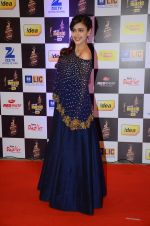 Hrishita Bhatt at radio mirchi awards red carpet in Mumbai on 29th Feb 2016