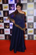 Hrishita Bhatt at radio mirchi awards red carpet in Mumbai on 29th Feb 2016 (354)_56d59e7f60ebc.JPG