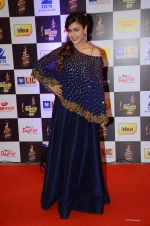 Hrishita Bhatt at radio mirchi awards red carpet in Mumbai on 29th Feb 2016 (355)_56d59e80b7207.JPG