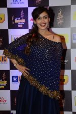 Hrishita Bhatt at radio mirchi awards red carpet in Mumbai on 29th Feb 2016 (359)_56d59e85eb055.JPG
