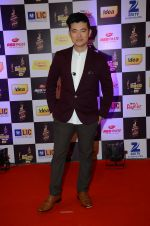 Meiyang Chang at radio mirchi awards red carpet in Mumbai on 29th Feb 2016 (26)_56d59f2d347ad.JPG