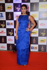 Pallavi Sharda at radio mirchi awards red carpet in Mumbai on 29th Feb 2016 (103)_56d59f7627b0e.JPG