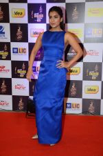 Pallavi Sharda at radio mirchi awards red carpet in Mumbai on 29th Feb 2016 (106)_56d59f7818120.JPG