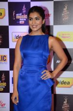 Pallavi Sharda at radio mirchi awards red carpet in Mumbai on 29th Feb 2016 (107)_56d59f78bd5ff.JPG