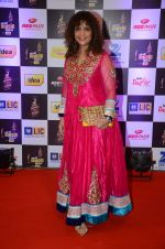Peenaz Masani at radio mirchi awards red carpet in Mumbai on 29th Feb 2016
