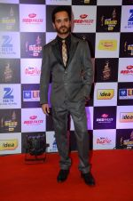 Raghav Sachar at radio mirchi awards red carpet in Mumbai on 29th Feb 2016 (32)_56d59fb333e71.JPG
