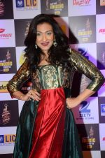Rituparna Sengupta at radio mirchi awards red carpet in Mumbai on 29th Feb 2016 (251)_56d59fbe2ed78.JPG