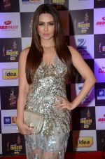 Sana Khan at radio mirchi awards red carpet in Mumbai on 29th Feb 2016 (63)_56d59fe0e1ca2.JPG