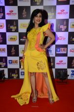Shibani Kashyap at radio mirchi awards red carpet in Mumbai on 29th Feb 2016 (458)_56d5a012f229c.JPG