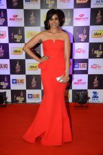 Sonali Kulkarni at radio mirchi awards red carpet in Mumbai on 29th Feb 2016 (352)_56d5a0427fa7c.JPG