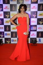 Sonali Kulkarni at radio mirchi awards red carpet in Mumbai on 29th Feb 2016 (351)_56d5a04164b9c.JPG
