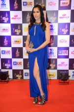 Sonnalli Seygall at radio mirchi awards red carpet in Mumbai on 29th Feb 2016