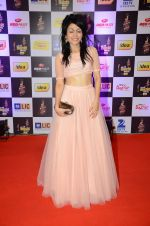 Sonu Kakkar at radio mirchi awards red carpet in Mumbai on 29th Feb 2016 (106)_56d5a072a27ca.JPG