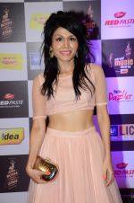 Sonu Kakkar at radio mirchi awards red carpet in Mumbai on 29th Feb 2016 (110)_56d5a074bc102.JPG