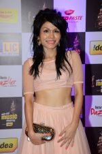 Sonu Kakkar at radio mirchi awards red carpet in Mumbai on 29th Feb 2016 (112)_56d5a076e91e3.JPG