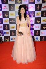 Sonu Kakkar at radio mirchi awards red carpet in Mumbai on 29th Feb 2016 (109)_56d5a073a2014.JPG