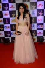 Sonu Kakkar at radio mirchi awards red carpet in Mumbai on 29th Feb 2016