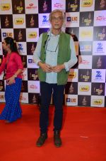 Sudhir Mishra at radio mirchi awards red carpet in Mumbai on 29th Feb 2016 (148)_56d5a08e2b6bc.JPG