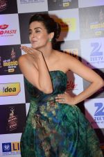 Surveen Chawla at radio mirchi awards red carpet in Mumbai on 29th Feb 2016 (21)_56d5a0a55faa4.JPG