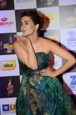 Surveen Chawla at radio mirchi awards red carpet in Mumbai on 29th Feb 2016 (22)_56d5a0a72ab36.JPG