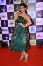 Surveen Chawla at radio mirchi awards red carpet in Mumbai on 29th Feb 2016 (23)_56d5a0a8cb28f.JPG
