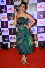 Surveen Chawla at radio mirchi awards red carpet in Mumbai on 29th Feb 2016 (24)_56d5a0a9d9f60.JPG