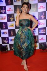 Surveen Chawla at radio mirchi awards red carpet in Mumbai on 29th Feb 2016 (25)_56d5a0aadefa1.JPG