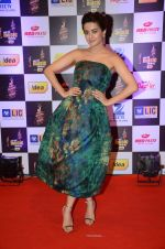Surveen Chawla at radio mirchi awards red carpet in Mumbai on 29th Feb 2016 (409)_56d5a0ae6f14a.JPG