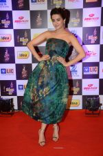 Surveen Chawla at radio mirchi awards red carpet in Mumbai on 29th Feb 2016 (410)_56d5a0afe2058.JPG